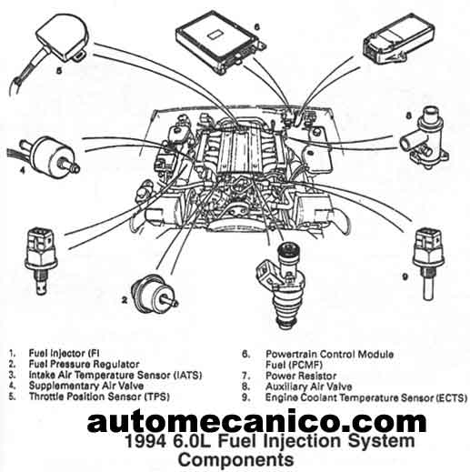jaguar xj6 1979 wiring diagram  jaguar  free engine image