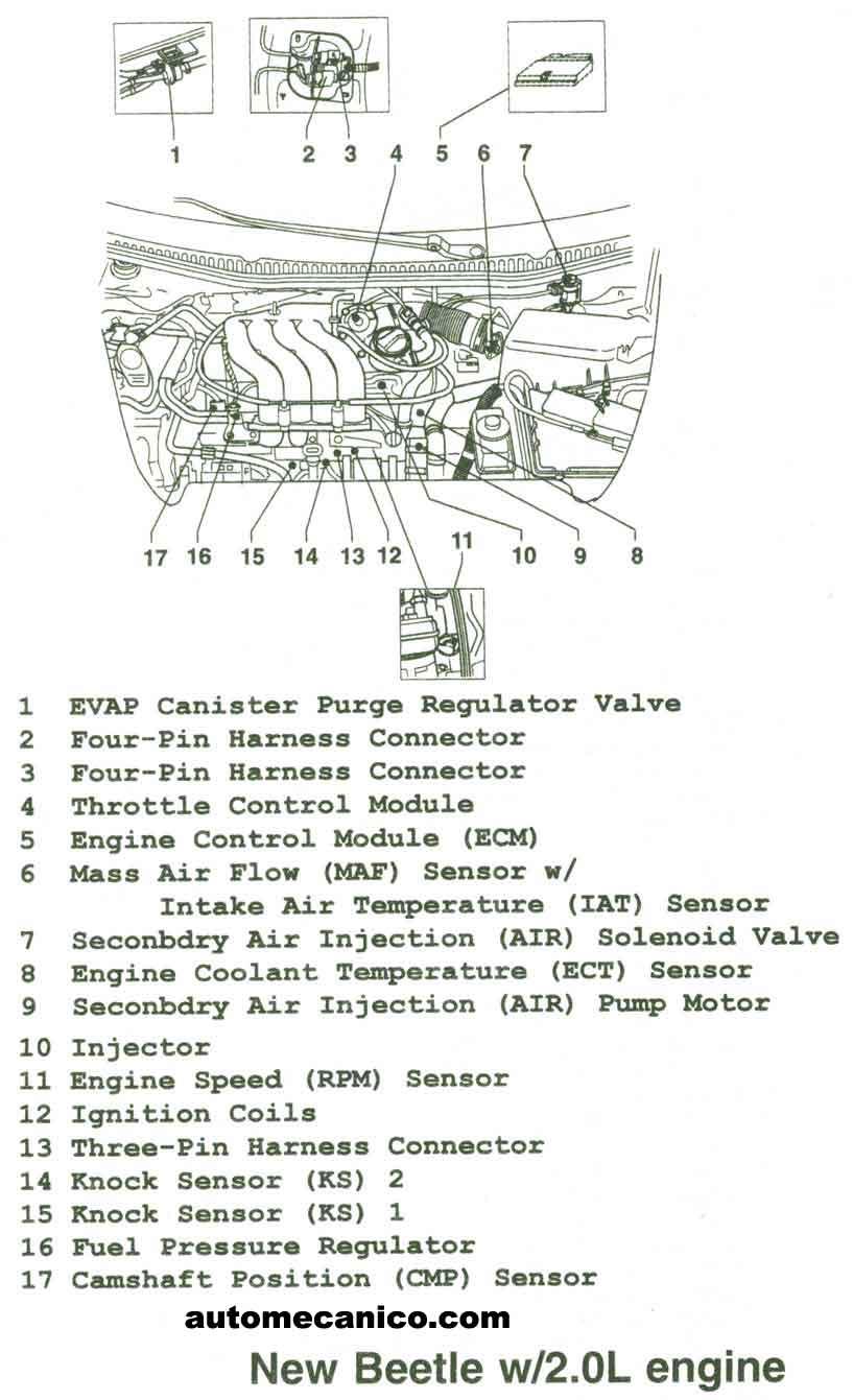 Volkswagen Ubicacion De Sensores Y Componentes Light